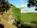 Photo © Harvey S. Hudson 2004 - the remains of curtain wall on east hill motte looking south